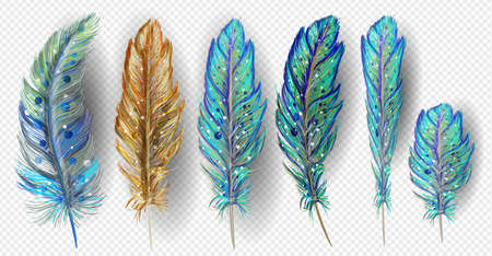 Realistic set with small and big multicolored bird feathers isolated Ilustração