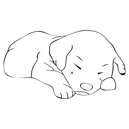 vector image of a little puppy in outlines