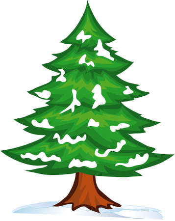 winter tree:  illustration shows the snow-strewn Christmas tree Illustration