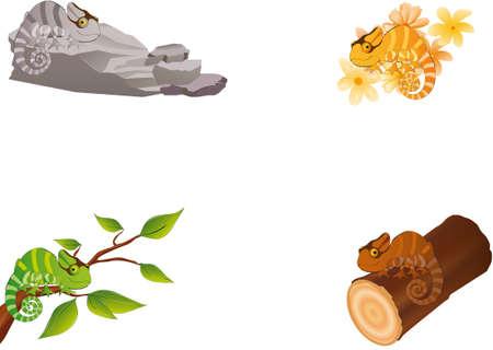 selva: ilustración vectorial muestra cuatro camaleones