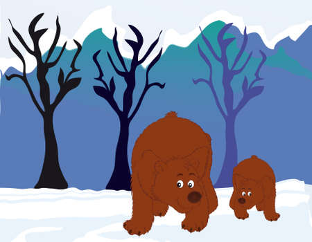 grisly: bears in the woods