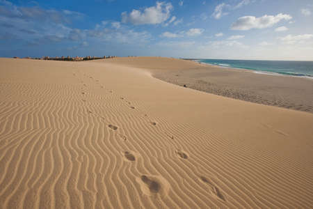 footprint in the sand dunes on the shore of atlantic ocean at Cape Verde photo