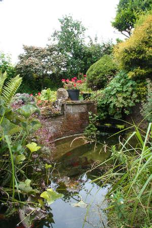bassin jardin: Garden Pond. Banque d'images