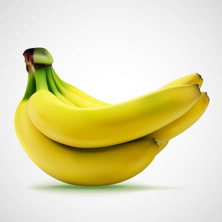 Bunch of fresh yellow bananas, eps10 vector composition