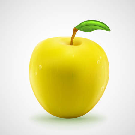 yellow apple: Yellow apple with the fresh green leaf and tiny water drops, eps10 vector illustration