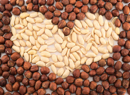 Heart shape background made of peanuts and hazelnuts photo