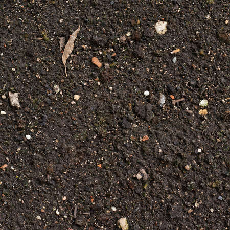 Earth texture with a small stone admixture as a background Stock Photo - 21792090