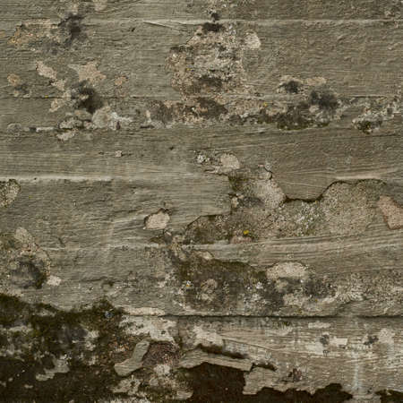 plaster mould: Old moldy concrete wall fragment as abstract background texture