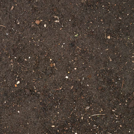 admixture: Earth texture with a small stone admixture as a background Stock Photo