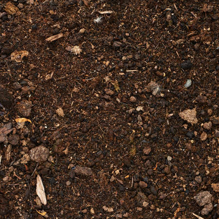 Earth ground covered with compost mulch fragment as a texture