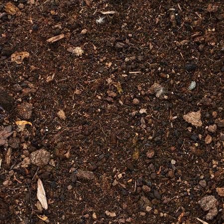 paillis: sol de la Terre recouverte de paillis de compost fragment comme une texture Banque d'images