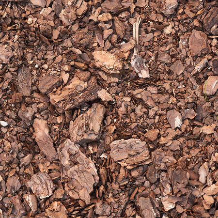 Earth ground covered with compost mulch fragment as a texture  Stock Photo - 22689357