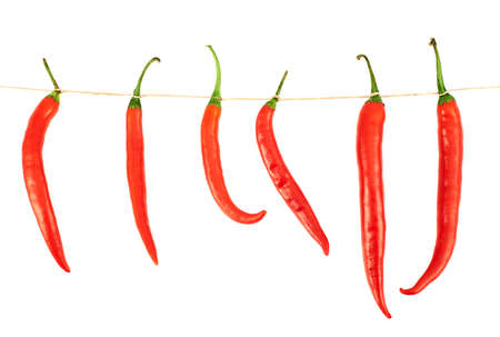 Tied red chili peppers composition, isolated over white background photo
