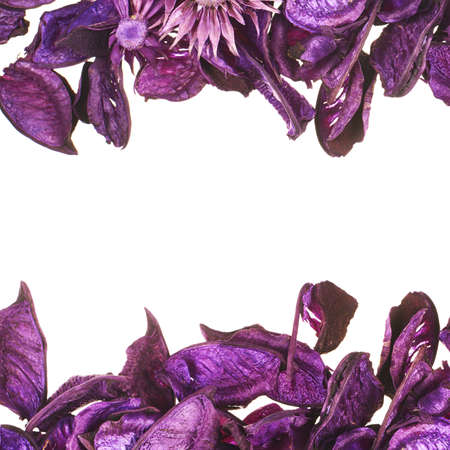 medley: Medley violet potpourri leaves copyspace background composition over white foreground Stock Photo