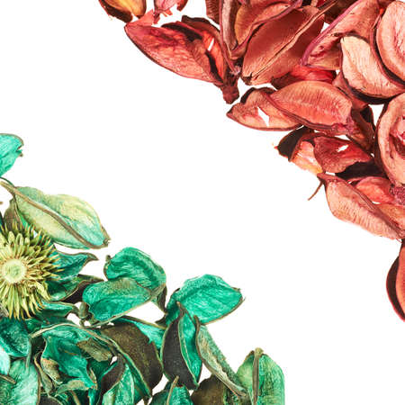 medley: Medley potpourri green and red leaves copyspace background composition over white foreground Stock Photo
