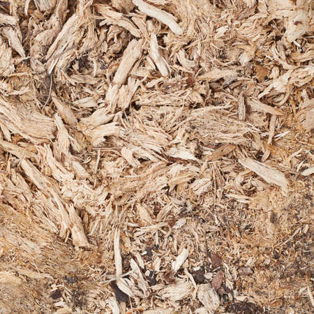 Wood flakes and fibers composition as a background texture photo