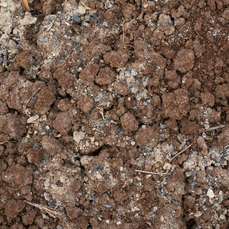 admixture: Bad quality earth soil composition as an abstract