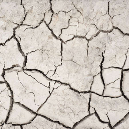 Dried and cracked mud soil fragment as a background texture