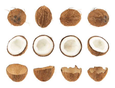 Set of coconut fruits isolated over the white background, whole and cut in halves versions