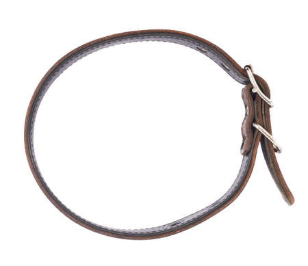 round collar: Old leather dog-collar isolated over the white background, top view above Stock Photo
