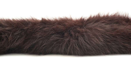 Strip of brown fur isolated over the white background