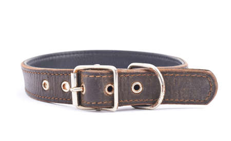 round collar: Old leather dog-collar isolated over the white background, side view