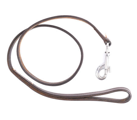 Old leather dog leash composition isolated over the white background