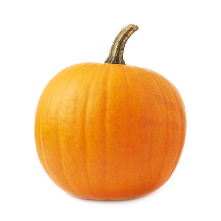 Orange pumpkin isolated over the white background, side view foreshortening