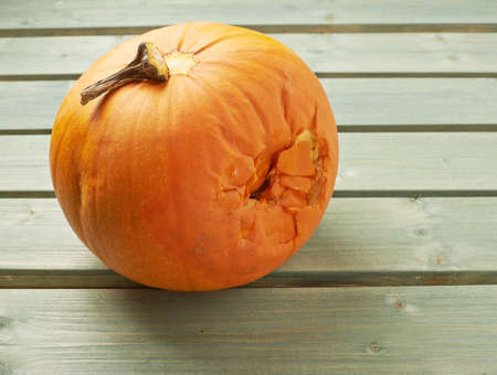 Spoiled orange pumpkin over the background made of green painted wooden boards photo