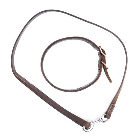 round collar: Old leather dog collar and leash, composition isolated over the white background, top view above