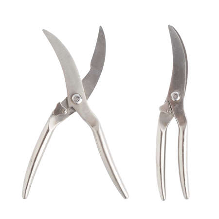 snip: Secateurs fish metal scissors isolated over the white background, set of two foreshortenings