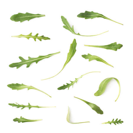 rocket lettuce: Multiple signle eruca sativa rucola arugula fresh green rocket salad leaves set, isolated over the white