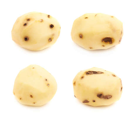 multiple images: Peeled clean yellow potato with the multiple black spots, isolated over the white background, set of four different images Stock Photo