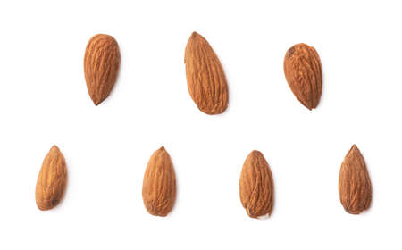 Set of seven almond seed images isolated over the white background
