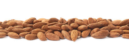Decorative border line made of multiple almond seeds isolated over the white background photo