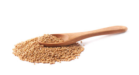 Wooden spoon over the pile of the brown mustard seeds, composition isolated over the white background photo