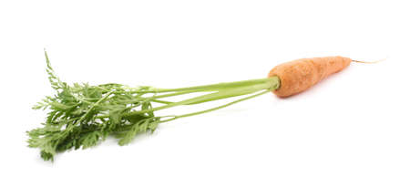 unpeeled: Unpeeled carrot with the green top isolated over white background