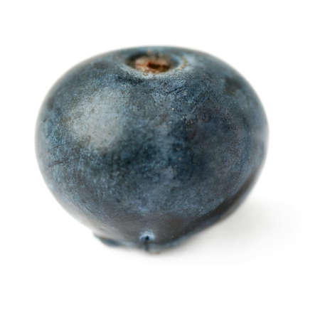 bilberry: Single berry Ripe bilberry or blueberry over isolated white background