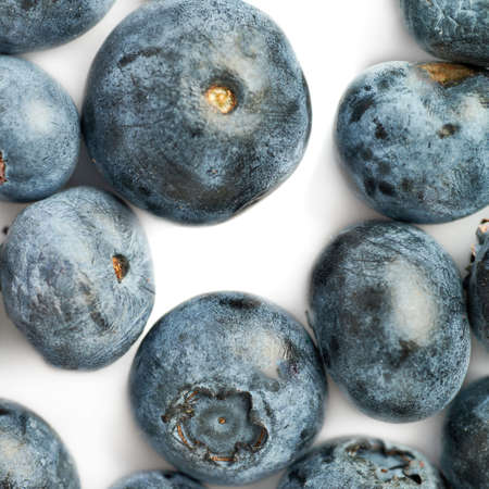 bilberry: Ripe bilberry or blueberry over white background