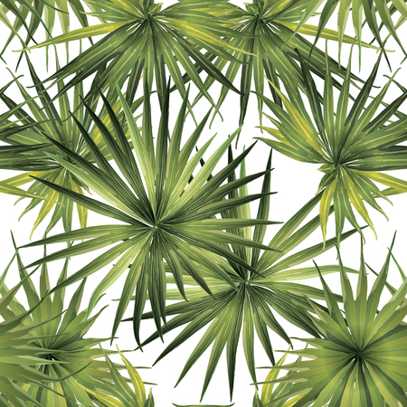 Palm Monstera Exotic Seamless Pattern. Green White Tropical Summer Background. Beach and Jungle Leaves for Swimwear Design.  Lei Rapport. Retro Hawaiian Print. Exotic Texture. Botanic tiling.