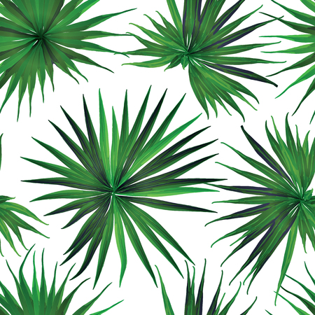 Palm Monstera Seamless Pattern. White Green Tropical Summer Background. Beach Jungle Leaves for Swimwear Design. Lei Rapport. Retro Hawaiian Print. Exotic Texture. Botanic tiling. Illustration