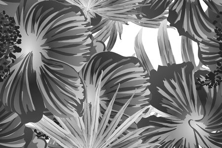 Black white exotic pattern. Monstera leaves and hibiscus flowers in summer print.  Saturated large floral swimwear print. Horizontal romantic wild vector exotic tile. Hypernatural botanic design.