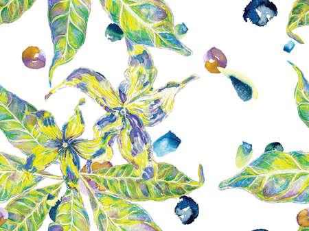 Vibrant Sakura and Jasmine Print. Bio Jasmin Seamless Pattern. Floral Ayurveda Pattern. Green and Aqua Menthe Watercolor Citrus Orange Blooming Flowers and Leaves. Summer Vintage Background. Banco de Imagens