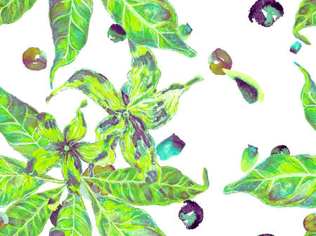 Summer Vintage Background. Bio Jasmin Seamless Pattern. Watercolor Citrus Orange Blooming Flowers and Leaves. Vibrant Sakura and Jasmine Print. Floral Ayurveda Pattern. Green and aqua menthe Banco de Imagens