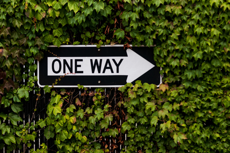One way sign surrounded by a green ivy bush on a fence