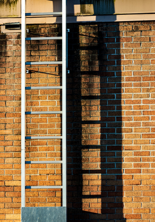 Ladder casting shadow on a worn old stained brick wall in sunlight