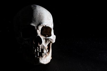 Human skeleton skull head isolated on black