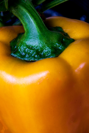 Tasty Fresh Bell Pepper close up growing