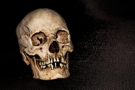 Human skeleton skull head isolated on black background Stock Photo
