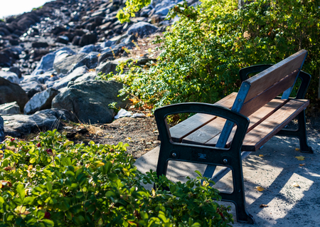 Park bench next to a hedge overlooking a rocky beach Stock Photo
